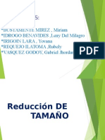 Diapositivas Reduccion de Tamaño 1