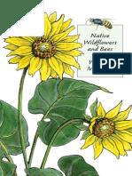 Native Wildflowers Bees Western Montana