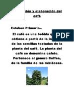 La Produccion Del Café