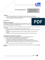 FERRITAS2.pdf