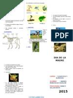 CRIPTICO ANIMALES VERTEBRADOS ANCON SCHOOL.docx
