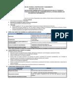 Cas 067-2015 - Tecnico Programador (1)
