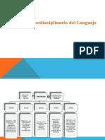 Estudio Interdisciplinario Del Lenguaje