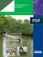 Quantifying Mangrove