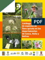 Catalogo Fotografico de Especies de Flora Apicola