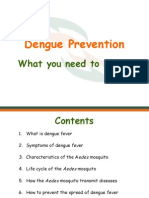 Dengue and Prevention