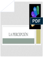 5. Percepción (Visual)