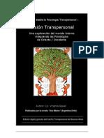 Libro Vision Transpersonal Lic Virginia Gawel