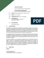 silabo curso capacitacion para capacitadores.doc