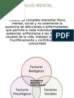Estrategiasanitariasaludmentalyculturadepaz Stephaniealiaga 130204002617 Phpapp01 Copia