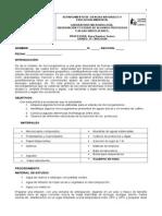 observacion-de-microorganismos.doc