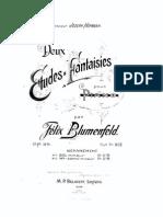 IMSLP02921-Blumenfeld_25_1.pdf