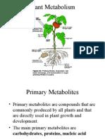 Plant Metabolites