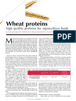 Wheat proteins - high quality proteins for aquaculture feeds