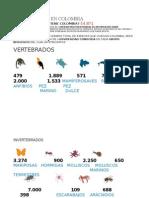 Biodiversidad en Colombia