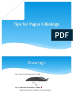 tips for paper 6.pdf