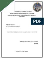 COMENTARIO LEY DE ARMAS Y MUNCIONES 10 ART..docx