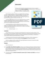 5. 2. El ADN.pdf