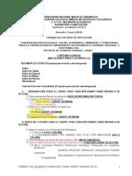 Contenido-del-Trabajo-de-Aplicación-Planificación-2015-I