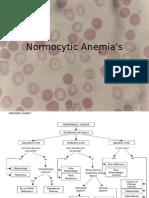 Normocytic Anemia's