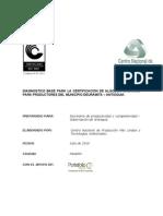DOK9-Estudio_Portafolio_Verde.pdf