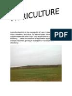 agriculturaaaaa
