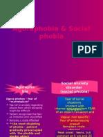 Agora vs Social Phobia (neurosis)