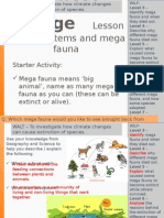 Lesson 6 - Climate Changes and Ecosystems - Mega Fauna