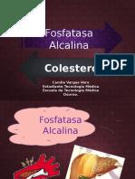 fosfatasa alcalina y colesterol