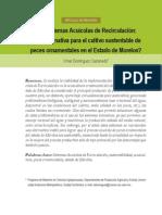 Dominguez-Castanedo, 2013. Los Sistemas Acuicolas de Recirculacion