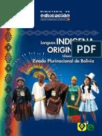 Lenguas Indigenas Originarias