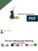 Training & Development-1