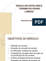 DisciplinadeGestodeCarreiras.pdf