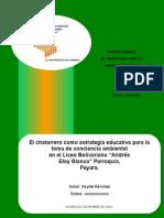 Rayde Proyecto Paginas Version Nov 2011