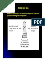 Bioenergetica_1_2015.pdf