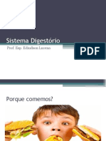 Sistema Digestório Prof Edi
