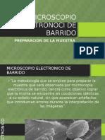 Microscopio Electronoci de Barrido