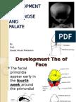 desenvolvimento da face