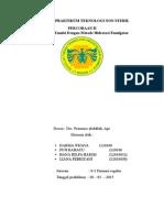 LAPORAN emulsi.docx