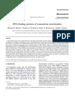 DNA-binding proteins of mammalian mitochondria