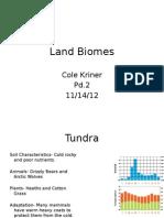 biome landforms project
