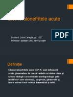 Glomerulonefritele Acute