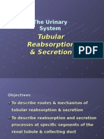 3) Tubular Reabsorption & Secretion