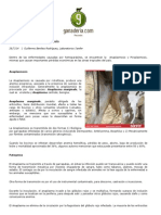 Articulo Anaplasmosis y Piroplasmosis
