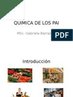 QUIMICA DE LOS PAI2.pptx