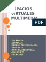 Espacios Virtuales Multimedia