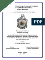 Identifiación y Manejo Rehabilitador de la Disfagia Neurológica en Hospital Aldo Chavarría