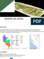 Distrito Los Olivos Expo 02