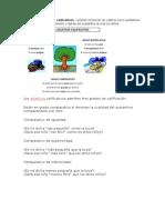 Ejemplos de Adjetivos Calificativos