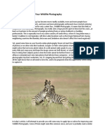 Ten Tips for Improving Your Wildlife Photography.pdf